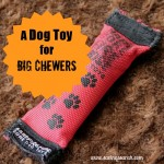 A Dog Toy Worth the Money for Chewers