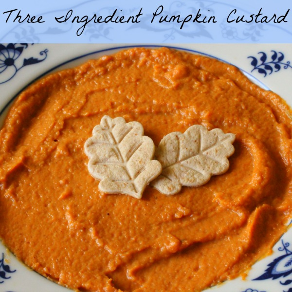Three Ingredient Pumpkin Custard That is a Snap to Make - Earning and ...