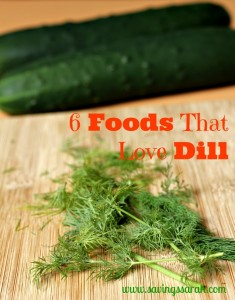 6 Foods That Love Dill (Easy, Inexpensive to Grow Herbs Series)