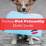 Travel with Pets-Find Pet Friendly Hotel Deals Easily