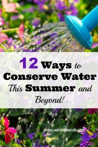 12 Ways to Conserve Water This Summer and Beyond!