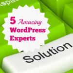 5 Amazing WordPress Experts