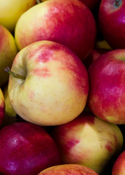 Fall Apples for Cheap Fall Fun