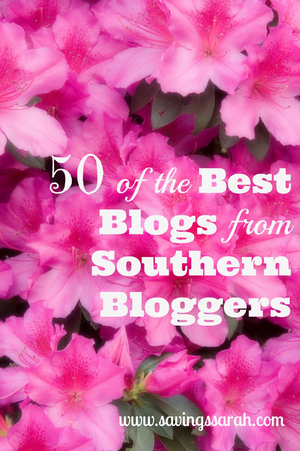 50 of the Best Blogs from Southern Bloggers