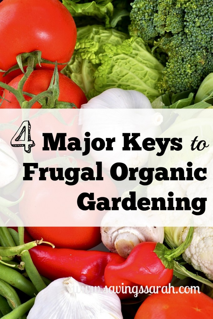 4 Major Keys to Frugal Organic Gardening