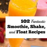 102 Fantastic Smoothie, Shake, and Float Recipes