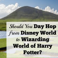 Should You One Day Hop To Wizarding World Harry Potter From Disney World?