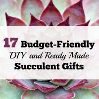 17 Budget-Friendly DIY and Ready Made Succulent Gifts
