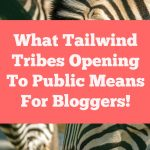 What Tailwind Tribes Opening To Public Means For Bloggers