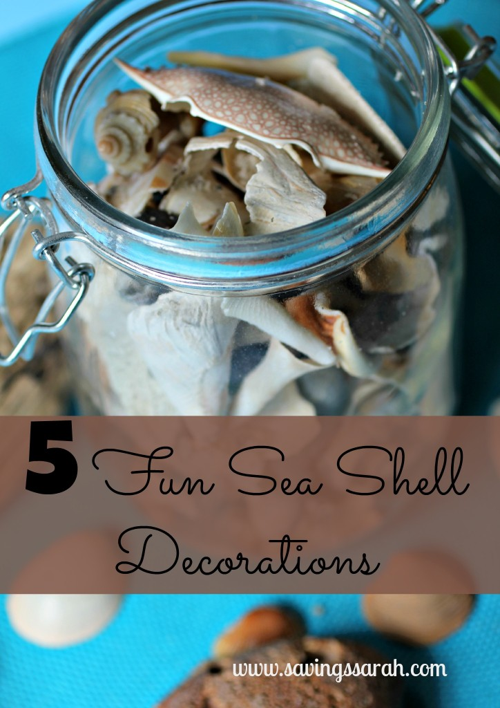 5 sea shell decorations to remind you of the beach year
